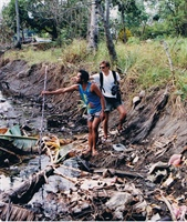 1994 Survey in the Phillipines